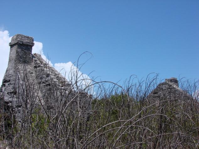 Wells Plantation Ruins